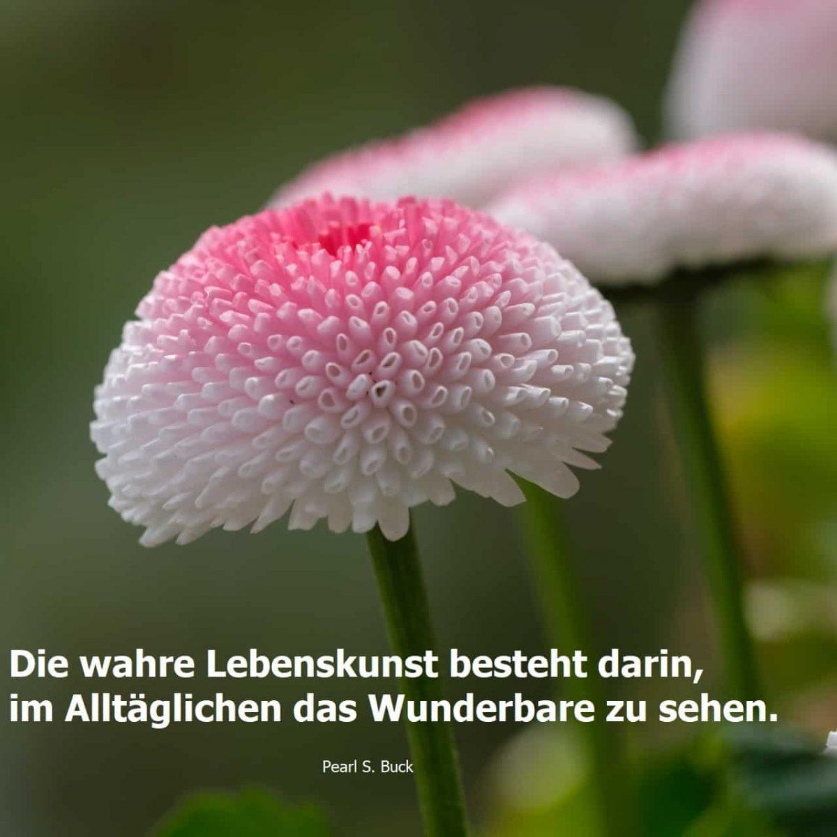 Fastenzeit, Frühling, Berger, Beatebewegt